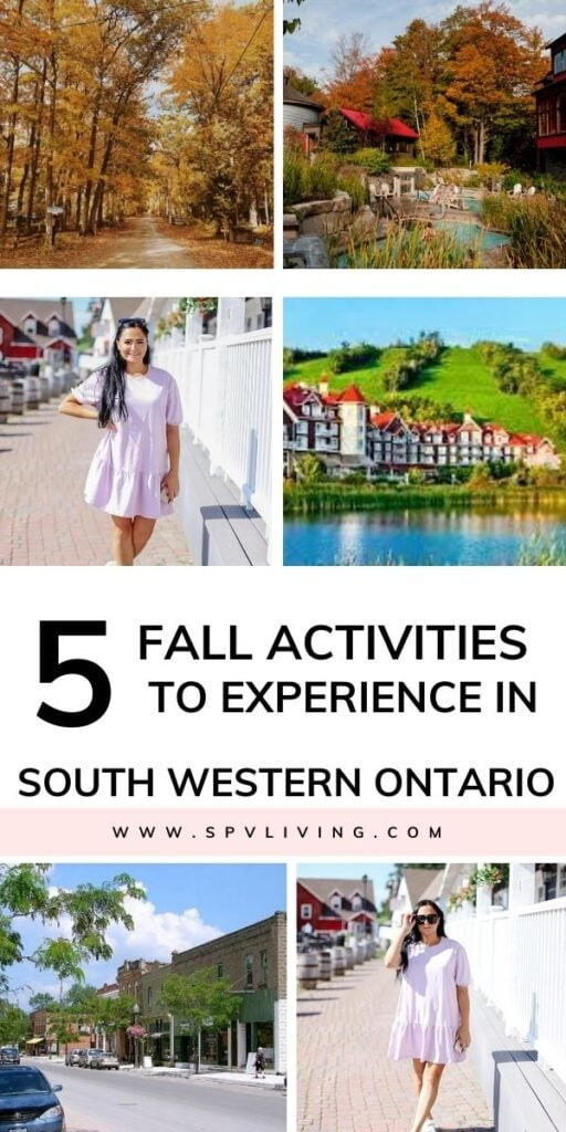 5 Fall Activities to Experience in South Western Ontario in 2020