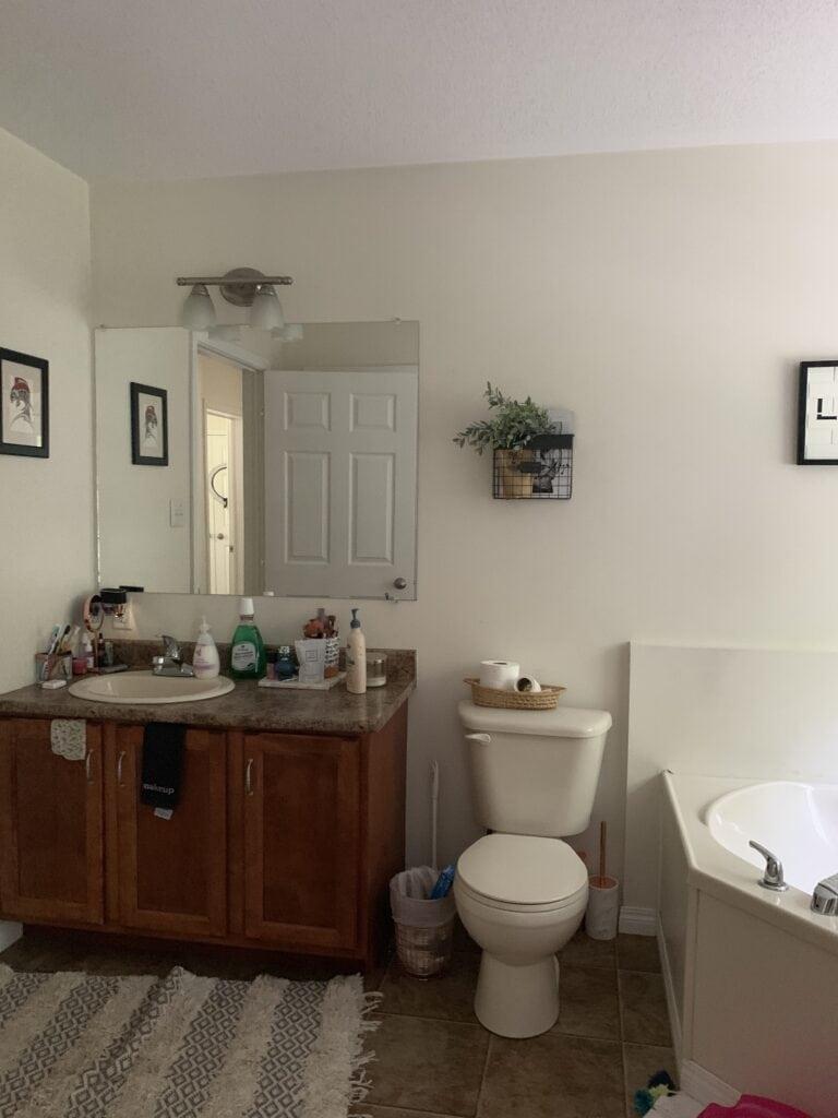 before the bathroom renovation