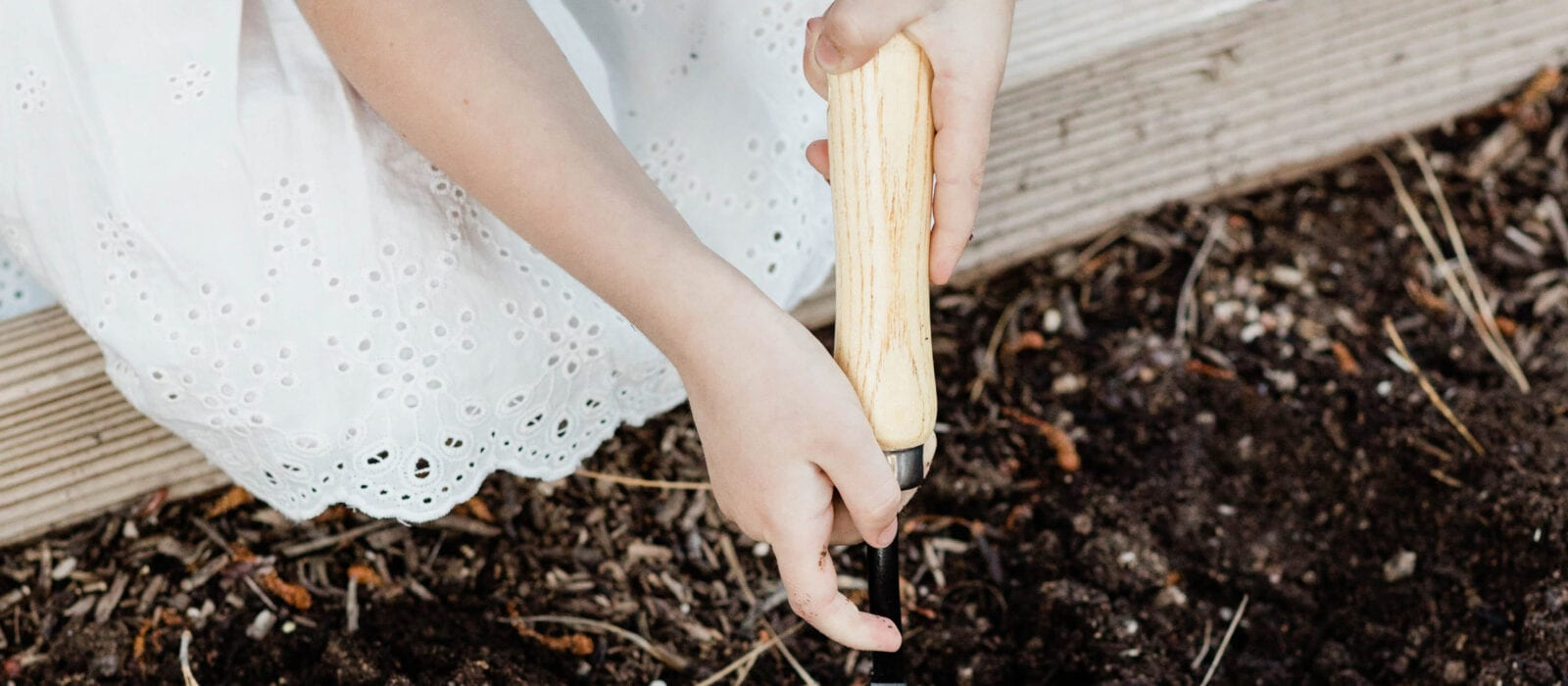 DIY: A FREE Raised Garden Bed!