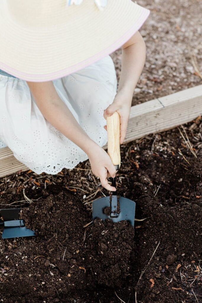 A Free and Simple DIY Raised Garden Bed