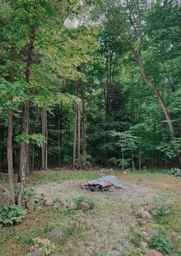 Budget Backyard Makeover: Help us Choose the Space!